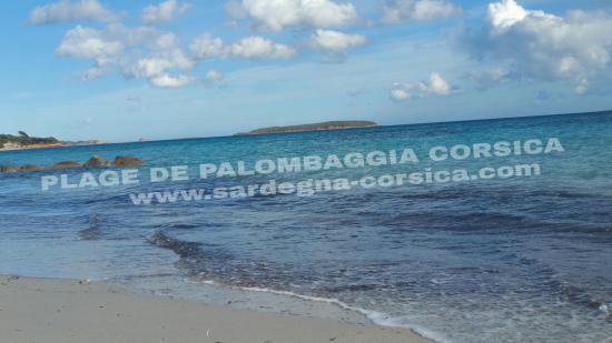 PLAGE DE PALOMBAGGIA CORSICA