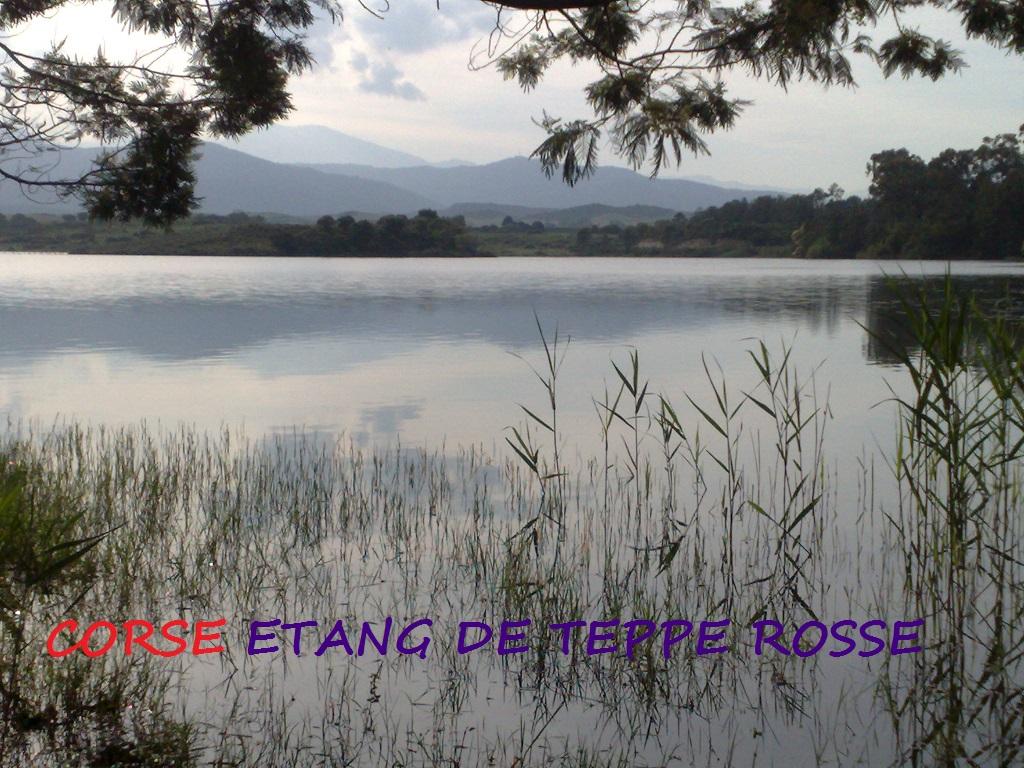 Carte Corse étang de Teppe Rosse