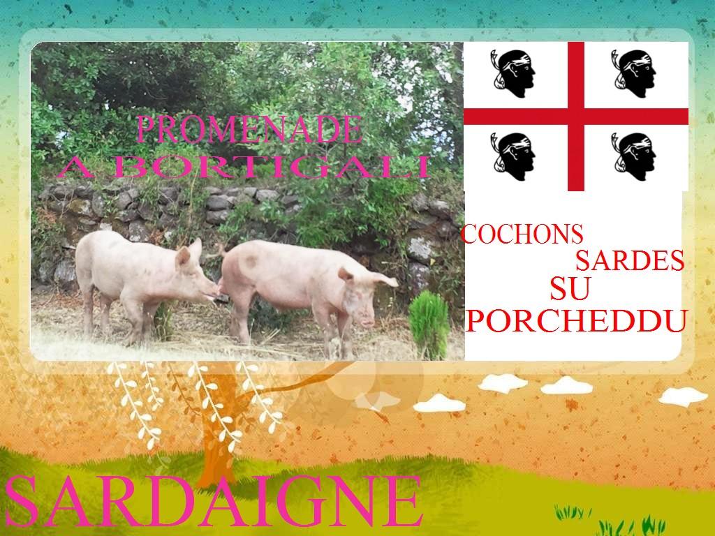 Carte Sardegna su porcheddu